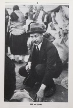 Nikolai Vavilov, the Russian genius of genetics, botany, and much more...